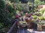 Nettlebed Gardens
