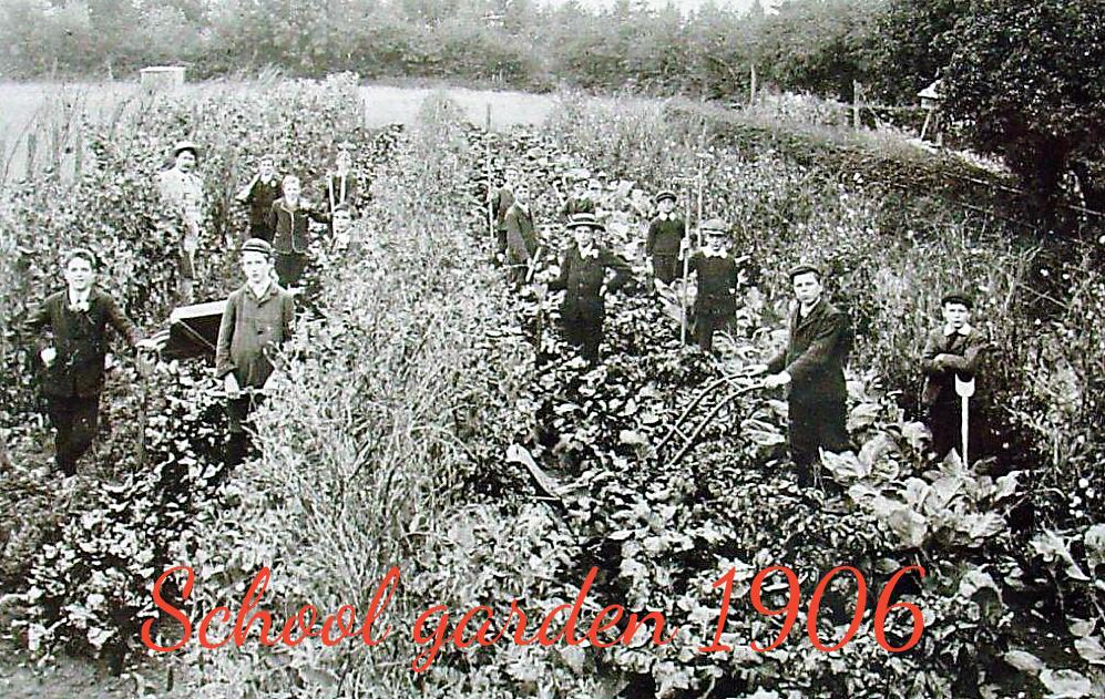 006 School garden copy